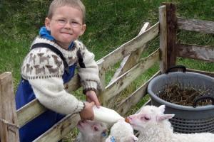 sheep-farming-museum