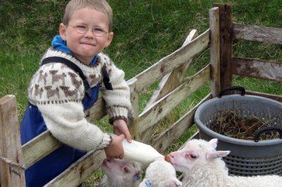 Sheep Farming Museum