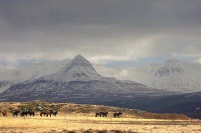 Skessuhorn Mountain