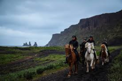 Vík Horse Adventure