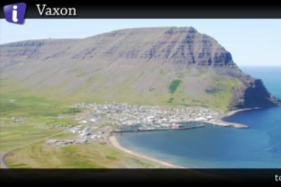 Vaxon