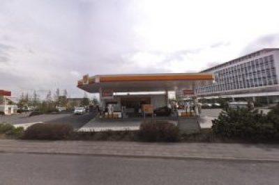 Shell Birkimelur