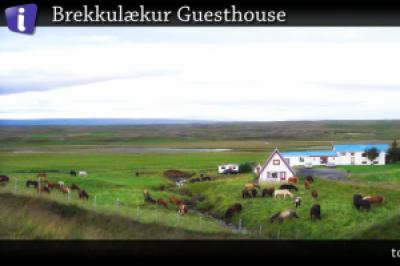 Brekkulækur Guesthouse